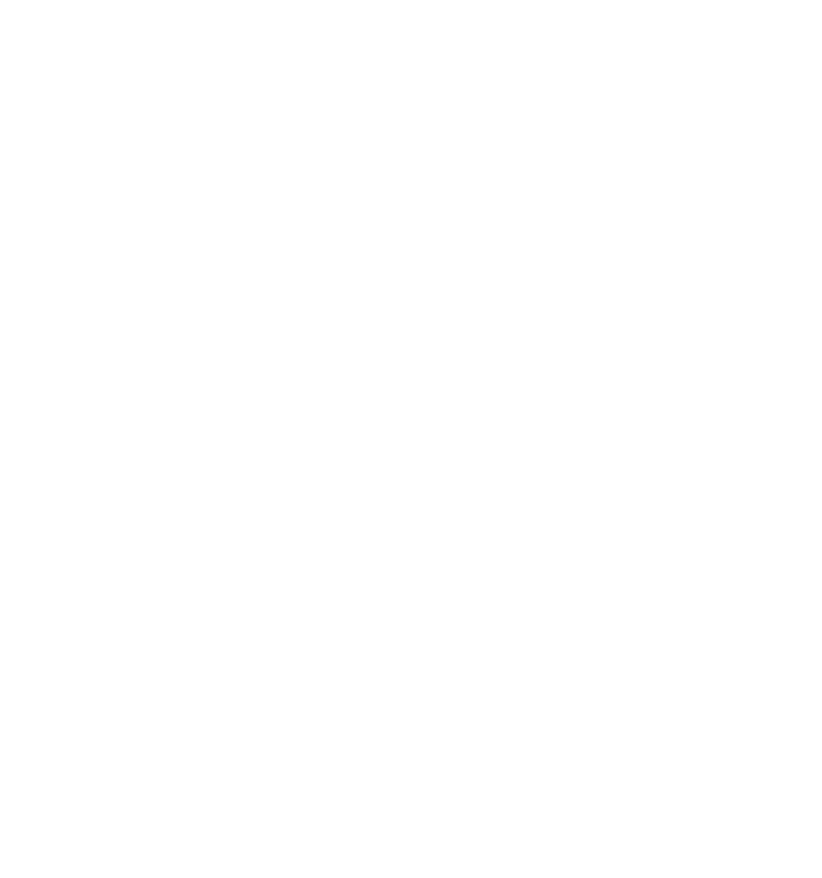Burak Pala Logo komplett